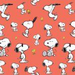 Snoopy Jump Aprikose