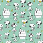 Snoopy Maske Mint